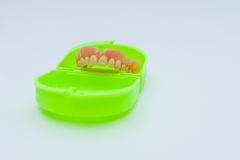 Dental prosthesis over a green box. With white background Royalty Free Stock Photos