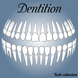Dental records 3D Royalty Free Stock Photo