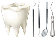 Dental set with tooth and equipment Stock Images