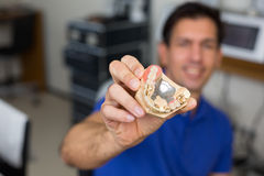 Dental technician presenting dental prosthesis Royalty Free Stock Photography
