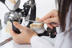 Dental technician working with articulator in dental laboratory Royalty Free Stock Photo