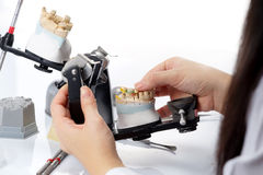 Dental technician working with articulator in dental laboratory Stock Images