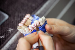 Dental technician working royalty free stock photo