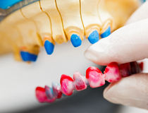 Dental Technician Working Stock Photos