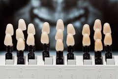 Dental teeth shades. Dental teeth shades and dental panoramic x-ray image on the background Royalty Free Stock Photo