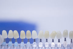 Dental tooth color guide for implants and crown colors Royalty Free Stock Images