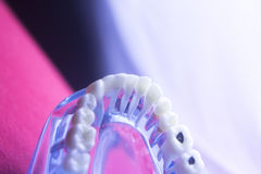 Dental tooth health decay Stock Photography