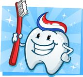 Tooth Cartoon Character with Toothbrush Stock Image
