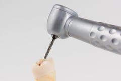 Dental turbine handpiece. Dentist using dental turbine handpiece for dental treatment Stock Images