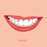dentale Immagini Stock Libere da Diritti