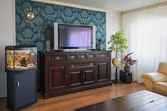 Dentapetserade väggen av vardagsrummet Fotografering för Bildbyråer