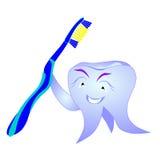 Dente con lo spazzolino da denti Fotografie Stock Libere da Diritti