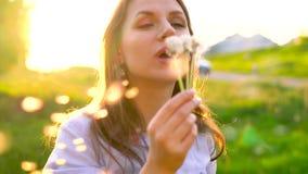 Dente-de-leão de sopro contra o por do sol, movimento lento da mulher da beleza vídeos de arquivo
