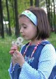 Dente-de-leão de sopro da menina Fotografia de Stock Royalty Free