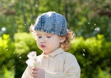 Dente-de-leão de sopro da menina encaracolado pequena bonita imagem de stock royalty free