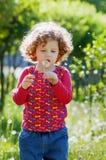 Dente-de-leão de sopro da menina encaracolado pequena bonita, tiro vertical fotos de stock royalty free