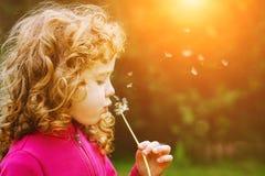 Dente-de-leão de sopro da menina nos raios do sol imagem de stock