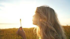 Dente-de-leão de sopro da mulher no campo do verão do por do sol video estoque