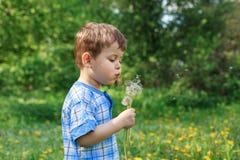 Dente-de-leão de sopro da criança feliz fora na paridade verão exterior fotografia de stock royalty free