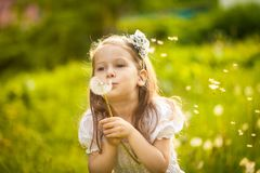 Dente-de-leão de sopro da menina pequena fotografia de stock