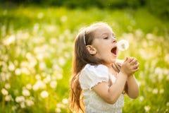 Dente-de-leão de sopro da menina pequena foto de stock royalty free