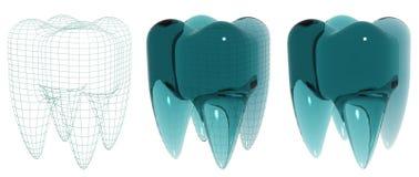 Dente de vidro Fotografia de Stock