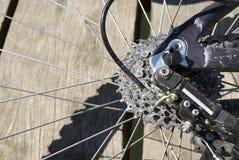 Dente della bici Immagine Stock