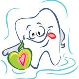 Dente e maçã. Imagens de Stock Royalty Free