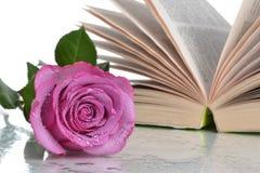 Ouvrez la fleur de livre Image libre de droits
