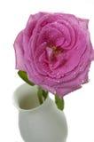 Dentelez rose Image libre de droits