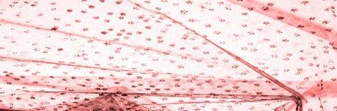 Dentelle rose sur le fond blanc L'extravagance et l'élégance sont COM photo libre de droits
