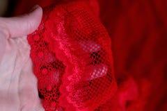 Dentelle rouge de tissu avec l'ornement image libre de droits