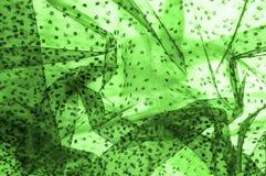 Dentelle verte sur le fond blanc Écoutez le mince et féminin Photographie stock