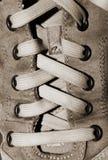 Dentelles en nylon dans la chaussure en cuir image libre de droits