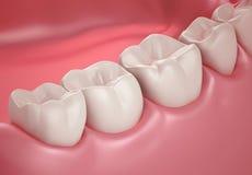 dentes 3D ou ascendente próximo do dente Imagem de Stock Royalty Free