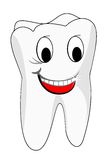 Dentes brancos Fotos de Stock