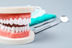 Dentes brancos e instrumentos dentais Fotos de Stock
