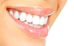 Dentes da mulher Fotos de Stock