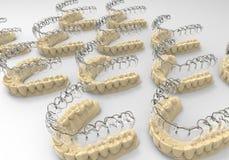 dentes da rendição 3D Imagens de Stock Royalty Free