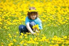 Dentes-de-leão da colheita do menino em um prado Fotos de Stock
