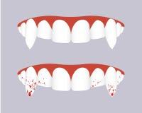 Dentes do vampiro com colmilhos ensanguentados Ilustração do vetor Imagens de Stock Royalty Free
