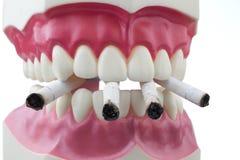 Dentes e cigarros Fotos de Stock Royalty Free