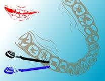 Dentes e toothbrushes Imagens de Stock