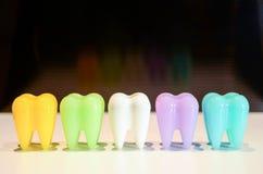 Dentes modelo coloridos Fotografia de Stock