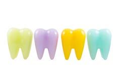 Dentes modelo coloridos Imagem de Stock