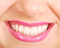 Denti Immagine Stock Libera da Diritti