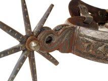 Denti cilindrici Fotografia Stock