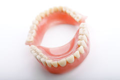 Denti delle mascelle della protesi dentaria fotografia stock libera da diritti