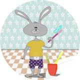 Denti delle spazzole di coniglio a casa Fotografie Stock