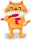 Denti di spazzolatura del gatto Immagine Stock